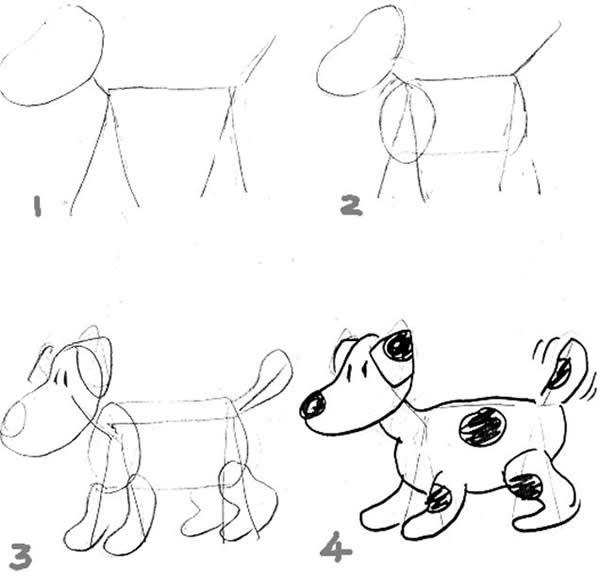 6: ANIMALS